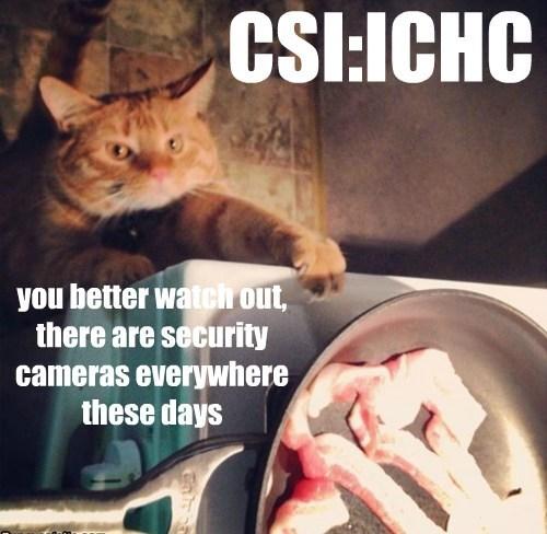 CSI:ICHC