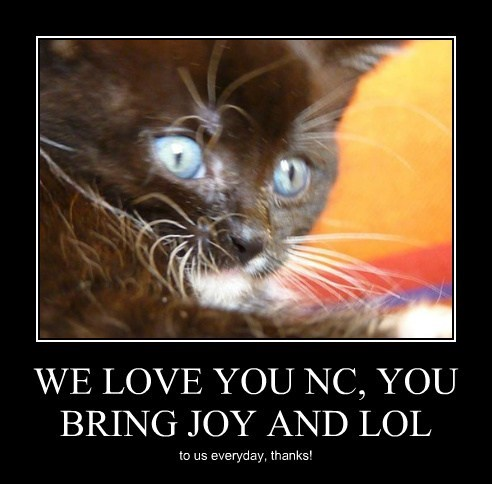 WE LOVE YOU NC, YOU BRING JOY AND LOL