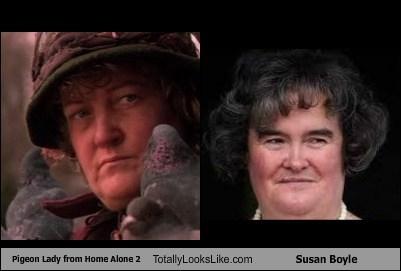 home alone 2,totally looks like,pigeon lady,susan boyle