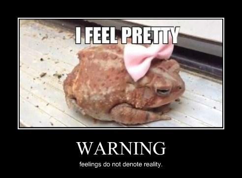 cute,pretty,funny,toad
