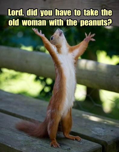 Lord,  did  you  have  to  take  the old  woman  with  the  peanuts?