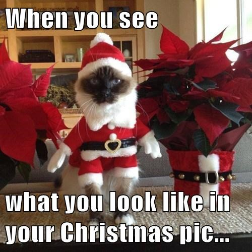 When you see  what you look like in your Christmas pic...