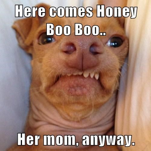 Here comes Honey Boo Boo..  Her mom, anyway.