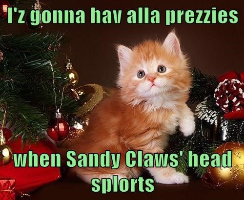 I'z gonna hav alla prezzies  when Sandy Claws' head splorts
