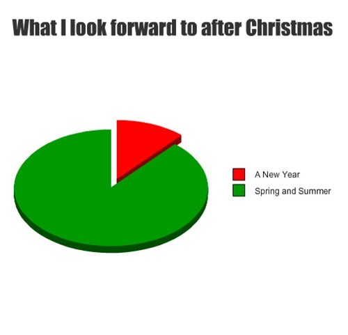 christmas,seasons,winter,Pie Chart