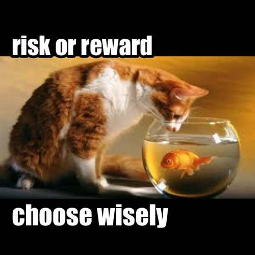 risk or reward