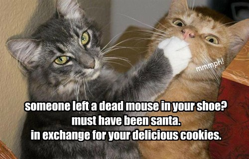 someone left a dead mouse in your shoe? must have been santa. in exchange for your delicious cookies.