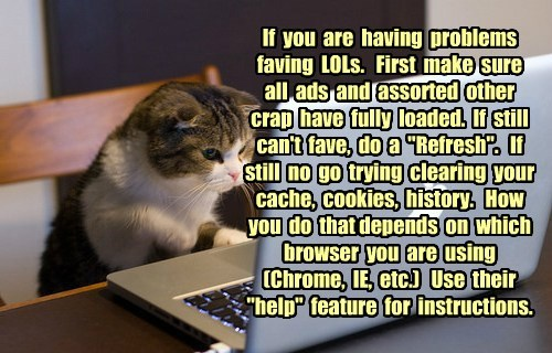"If  you  are  having  problems faving  LOLs.   First  make  sure all  ads  and  assorted  other crap  have  fully  loaded.  If  still  can't  fave,  do  a  ""Refresh"".   If still  no  go  trying  clearing  your cache,  cookies,  history.   How  you  do  th"