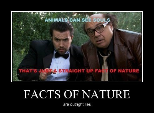 its-always-sunny,nature,funny,facts
