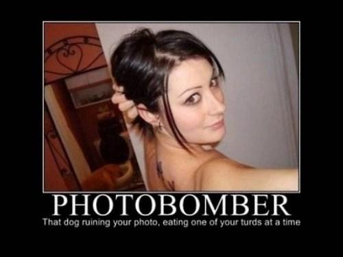 Sexy Ladies,funny,jerk,photobomb