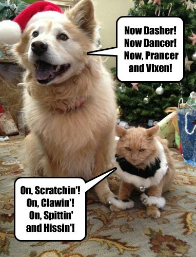 Now Dasher! Now Dancer!  Now, Prancer and Vixen!