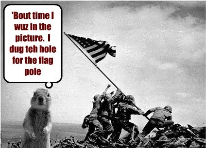Patriotic Prairie Dog has His Day