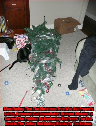 After Finding That The Christmas Tree Was Not Properly Set Up, Basement Cat Immediately Ordered Minions To Correct The Problem By Anchoring The Tree's Top To A Hook In The Ceiling And Adding Blocks To The Bottom.