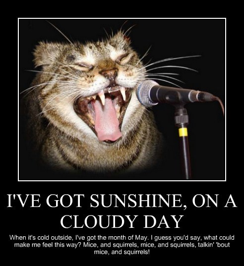 I'VE GOT SUNSHINE, ON A CLOUDY DAY