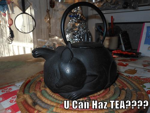 U Can Haz TEA????