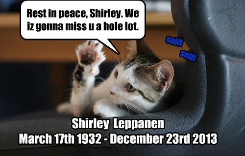 For the loss of a fellow cat lover:  In memorium.