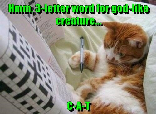 Hmm, 3-letter word for god-like creature...  C-A-T
