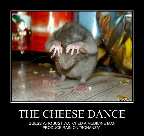 THE CHEESE DANCE