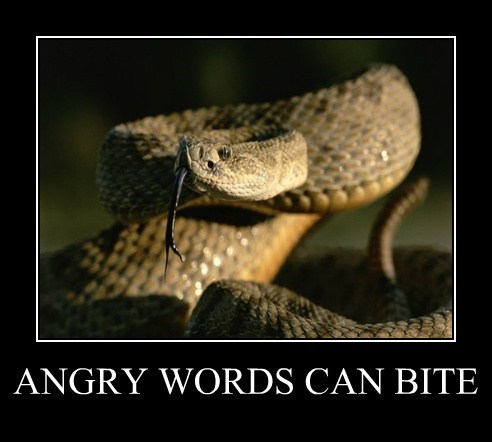 ANGRY WORDS CAN BITE
