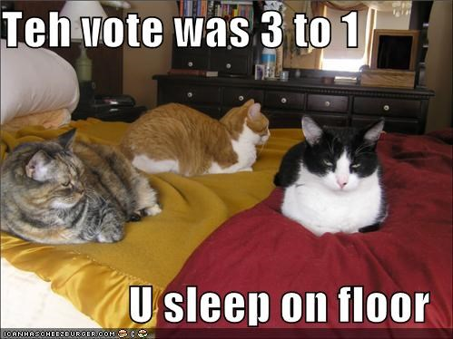 Teh vote was 3 to 1  U sleep on floor