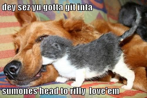 dey sez yu gotta git inta  sumones head to rilly  love'em