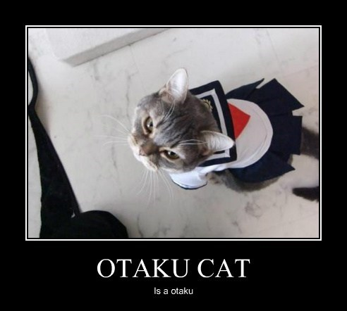 OTAKU CAT