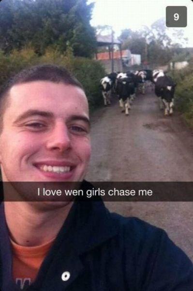 cows,hey ladies,snapchat