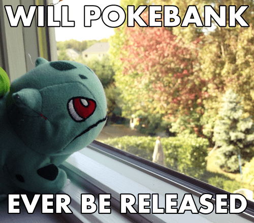 Pokémon,plushies,pokemon bank