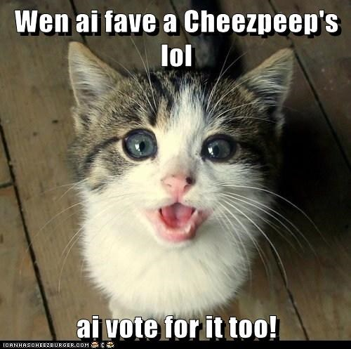 Wen ai fave a Cheezpeep's lol  ai vote for it too!