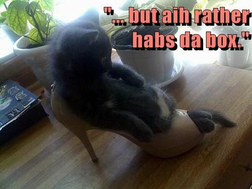 """... but aih rather                               habs da box."""