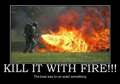You Can't Handle the Fire!