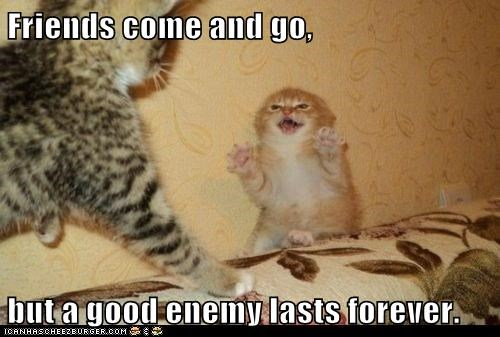 Friends come and go,  but a good enemy lasts forever.