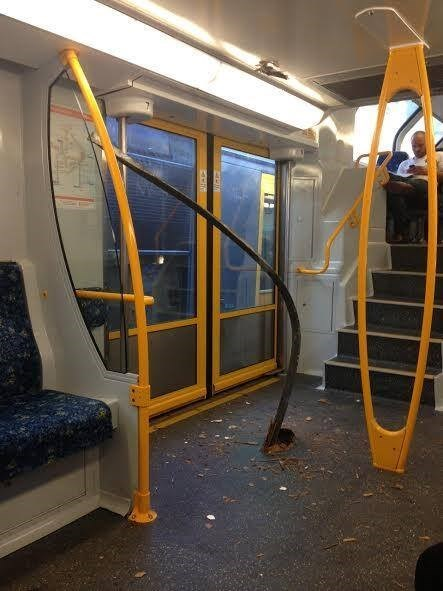 """Australians Don't Let a Thing Like """"Derailed Trains"""" Get in the Way of Their Chill"""