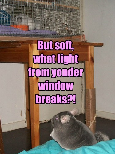 But soft, what light from yonder window breaks?!