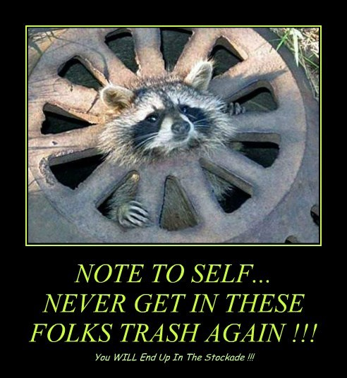 NOTE TO SELF... NEVER GET IN THESE FOLKS TRASH AGAIN !!!