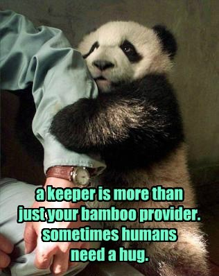 a keeper is more than  just your bamboo provider. sometimes humans  need a hug.