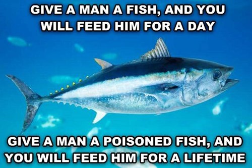 fish,funny,sayings,poisonous