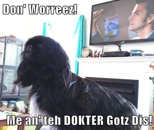 Don' Worreez!  Me an' teh DOKTER Gotz Dis!