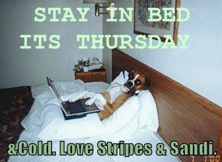 &Cold. Love Stripes & Sandi.