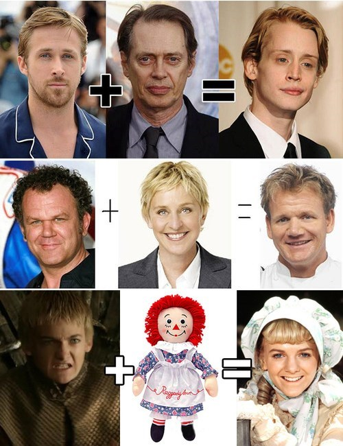 Celebrity Equations