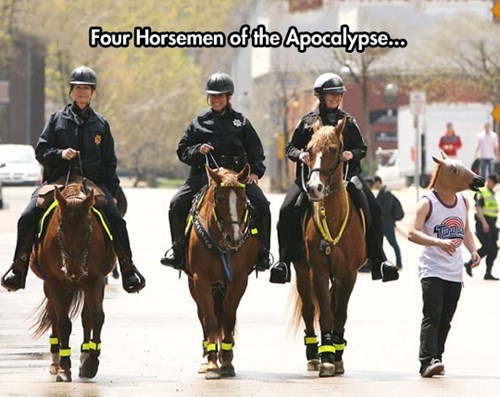 mounted police,horse mask,horse head,police