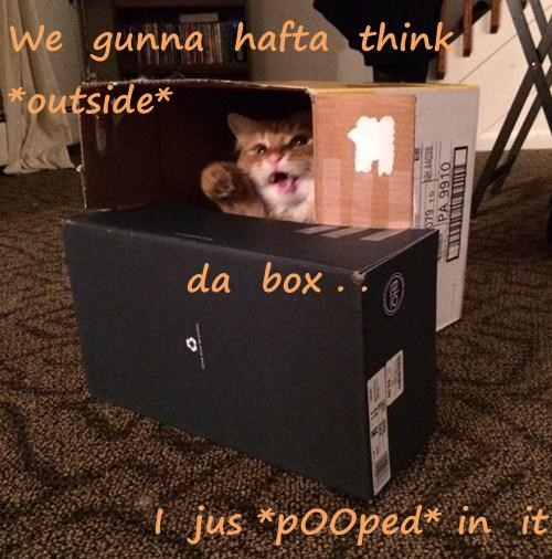 We  gunna  hafta  think *outside* da  box . . I  jus *pOOped* in  it