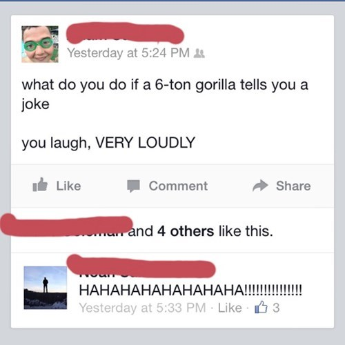 I Don't Like Gorilla Jokes Anymore...