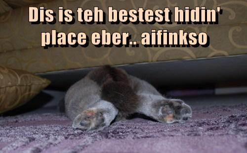 Dis is teh bestest hidin' place eber.. aifinkso