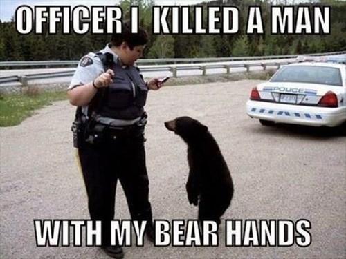 bears,cops,funny,puns