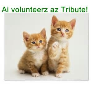 Ai volunteerz az Tribute!