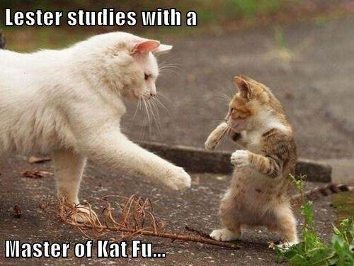 Lester studies with a  Master of Kat Fu...