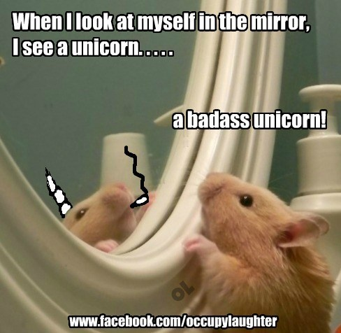 When I look at myself in the mirror, I see a unicorn. . . . .