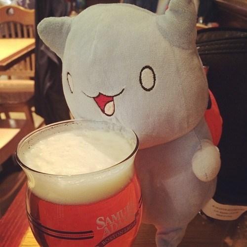 beer,Plush,catbug,cute,funny