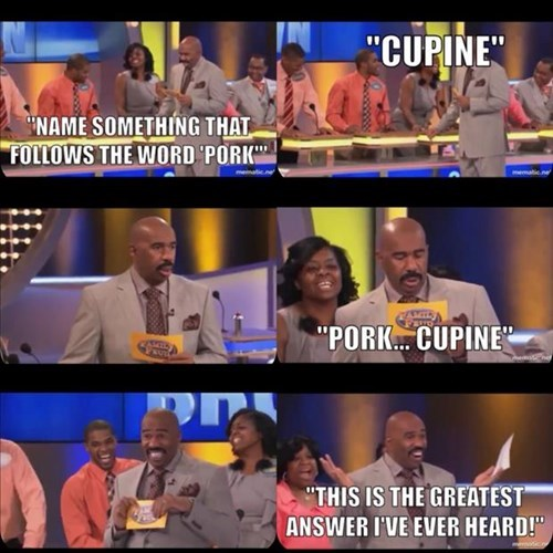 pork,porcupine,family feud,weird,steve harvey